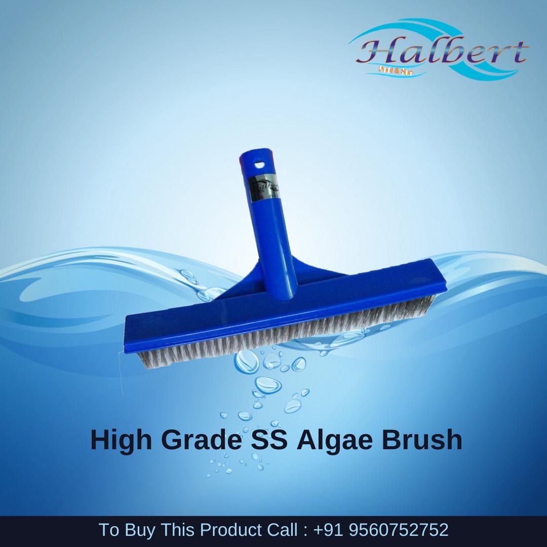 Curved Algae Brush